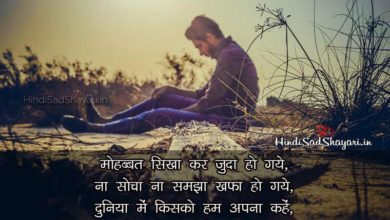 Photo of Dhoka Shayari Hindi, Dhokha Shayari Images, Quotes (2020)